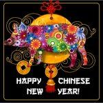 הורוסקופ סיני 2019 - שנת החזיר